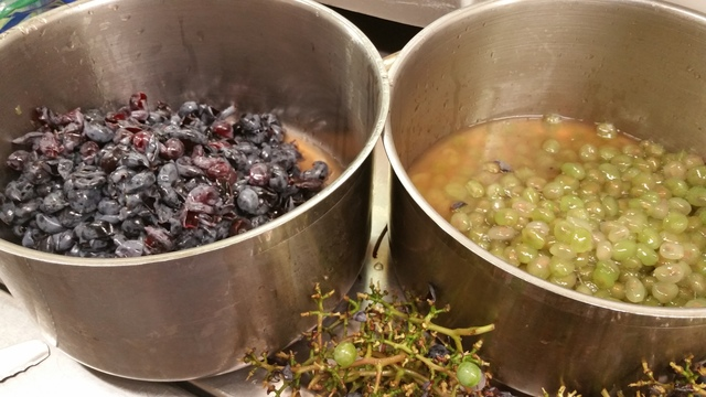 Making Concord Grape Jam